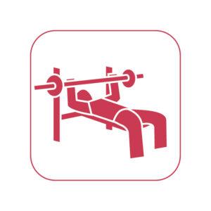 Kraft/Fitness
