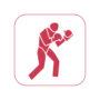 icon_boxen