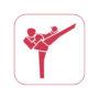 icon_kickboxen
